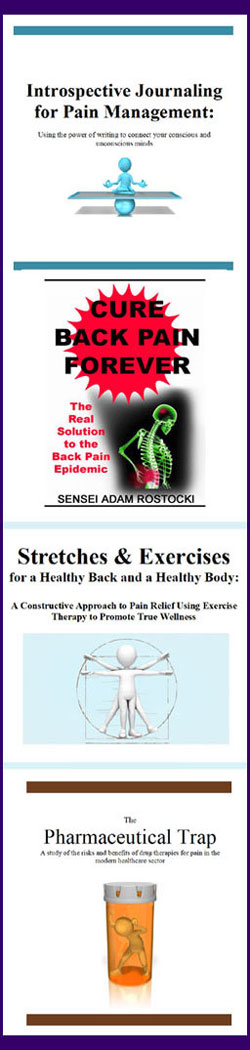recommended back pain books